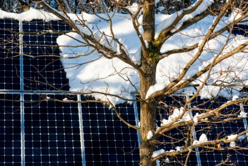 自家消費型太陽光発電は雪国の企業でも導入できる?